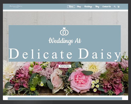 Delicate Daisy portfolio BWSIT Limited Web online selling